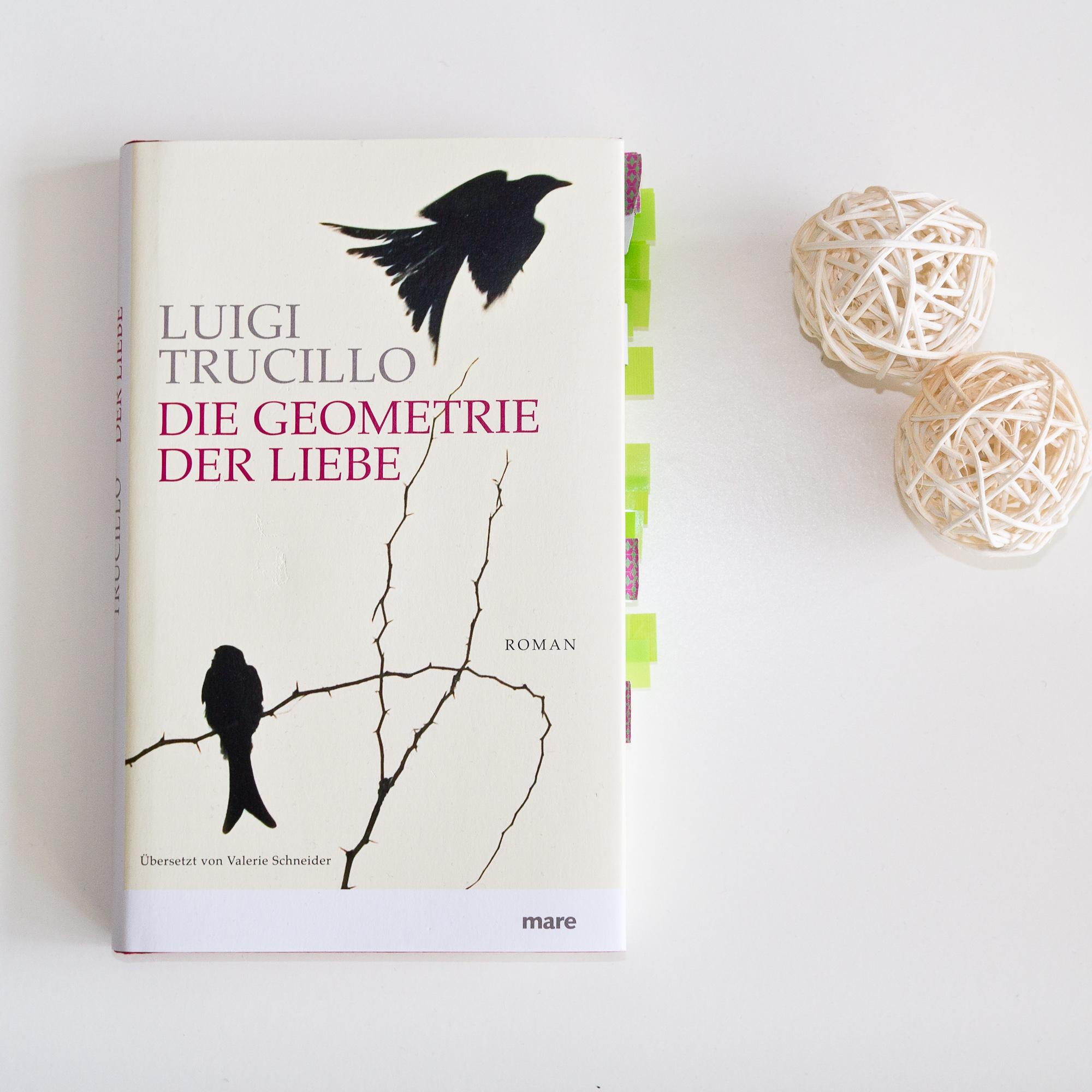 Die Geometrie der Liebe von Luigi Trucillo