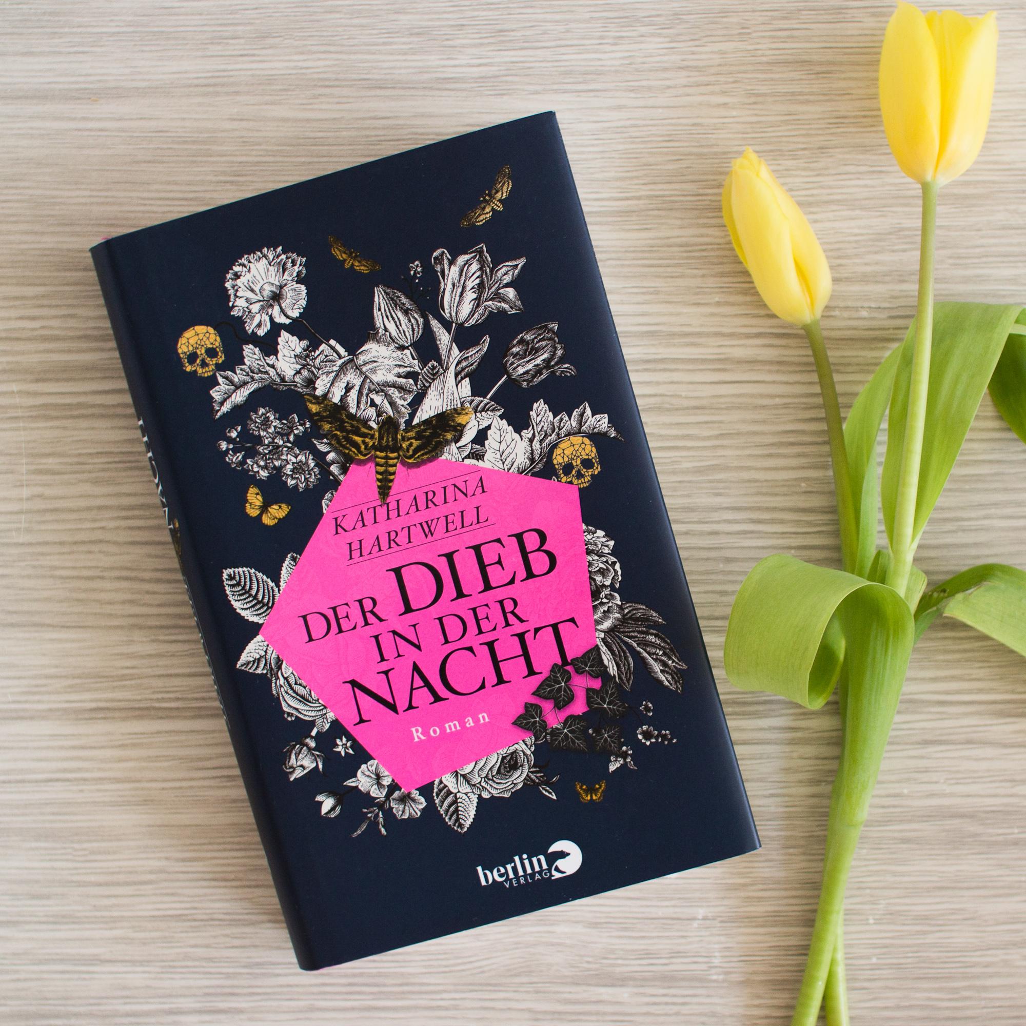 Der Dieb in der Nacht – Katharina Hartwell